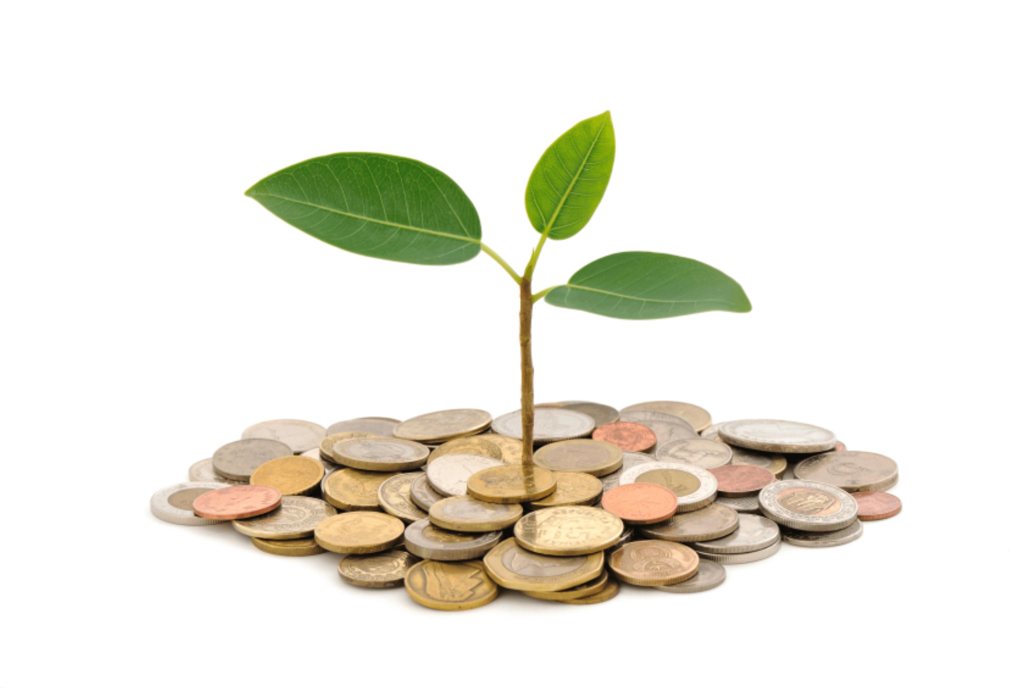 União aprova Lei que atualiza monetariamente a TCFA