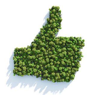 Comissão Interna de Meio Ambiente