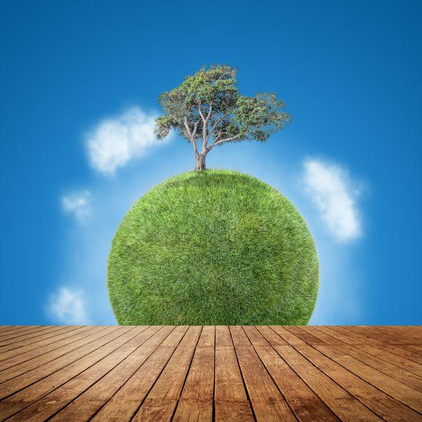 planeta terra coberto de folhagem e uma árvore no topo - Gestão de resíduos adequada