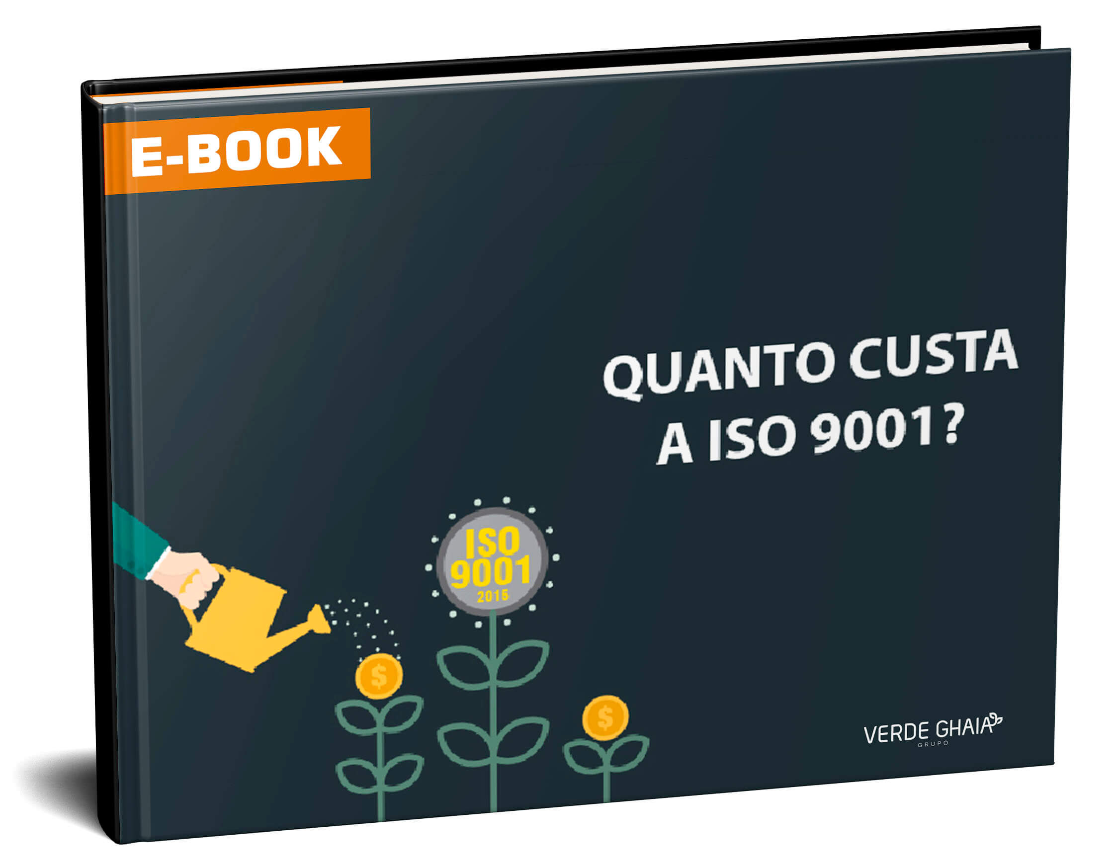 Quanto custa a ISO 9001