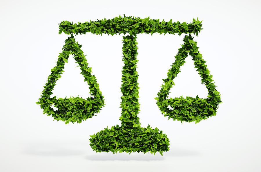 A tríplice responsabilização ambiental