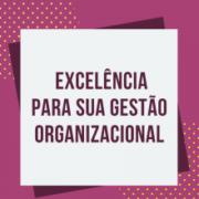 11 Fundamentos para a Excelência na Gestão das Organizações