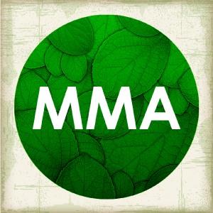 MMA implanta processos digitais