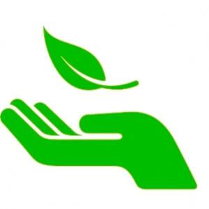 Reflexões sobre sustentabilidade numa visão da Rio +20