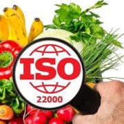 Lançada a nova versão em português da ISO 22000!