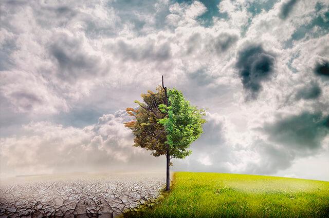 Escopo do Sistema de Gestão Ambiental