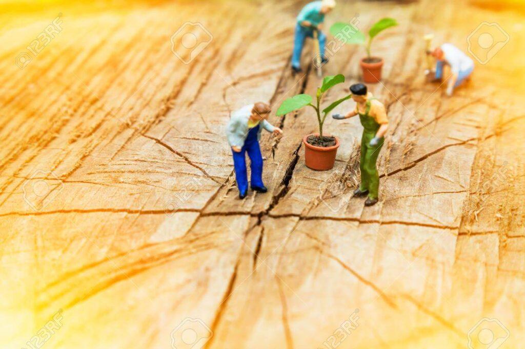 Levantamento e identificação de aspectos e impactos ambientais