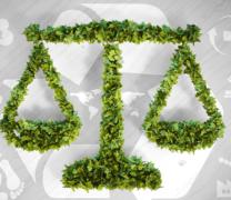 Suspensão dos prazos de atendimento às exigências ambientais
