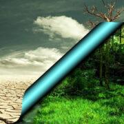 Você sabe o que é gestão ambiental?
