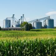 Agroindústria: como implementar um Sistema de Gestão Integrada?