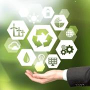 Por que implementar Educação Ambiental Empresarial?