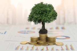 ESG: sustentabilidade é a nova realidade mundial