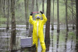 Recuperação de Áreas Contaminadas