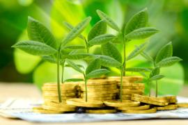 Política Nacional de Pagamentos por Serviços Ambientais