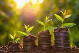 """O """"tripé da sustentabilidade"""" e a evolução empresarial"""