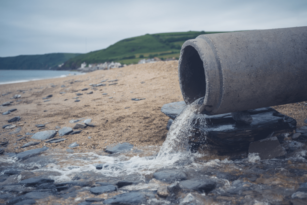 dcp-declaração-de-carga-poluidora