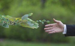 Marco legal do licenciamento ambiental e o saneamento básico