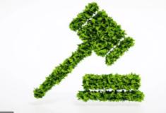 Informativo Jurisprudencial: Apreensão de veículo utilizado na prática de infração ambiental