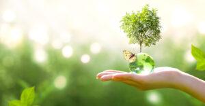 Serviços Ambientais e o Estímulo ao Mercado em Proteção à Natureza